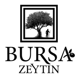Bursa Zeytin - Soðuk Sýkým Zeytinyaðý, Yeþil Zeytin, Siyah Zeytin, Doðal Zeytinyaðý Sabunu, Zeytin Çiçeði Kolonyasý, Çankýrý Kaya Tuzu, Bitkisel Çaylar