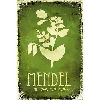 Mendel 1822 Retro Ahþap Poster 30x20