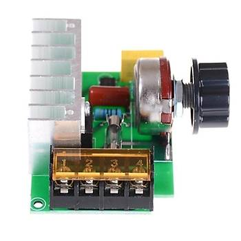 AC 220V 4000W Dimmer