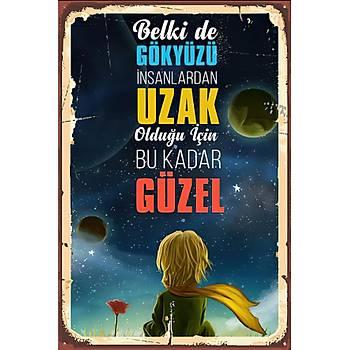 Gökyüzü Çok Güzel Retro Ahþap Poster 30x20