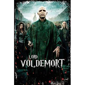 Lord Woldemort Retro Ahþap Poster 30x20