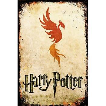 Harry Potter 4 Retro Ahþap Poster 30x20