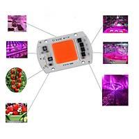 Tam Spektrum 380-840nm UV LED COB Topraksýz Tarým Bitki Büyütme 50W 220V