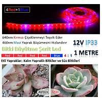 Tam Spektrum Hidrofonik Fito Sera Bitki Büyütme 5050 Þerit LED Iþýk 4 Kýrmýzý 1 Mavi
