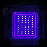 UV Mor LED Ultraviyole Lamba Cip 365nm 50W Yüksek Güç Iþýðý