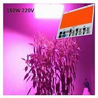 Tam Spektrum 380-840nm UV LED DOB Topraksýz Tarým Bitki Büyütme 150W 220V