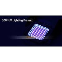 50W UV ULTRAVIOLE SMD LED Chip 395-400nm ALTIN TELLÝ