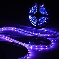 UV Þerit LED 3528 SMD 60/m Ýç Mekan 1mt 12V