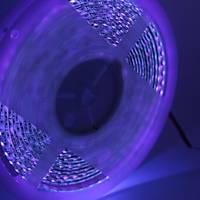 UV Þerit LED 3528 SMD 120/m Ýç Mekan 1mt 12V