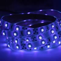 UV Þerit LED 3528 SMD 60/m Su Geçirmez 1mt 12V