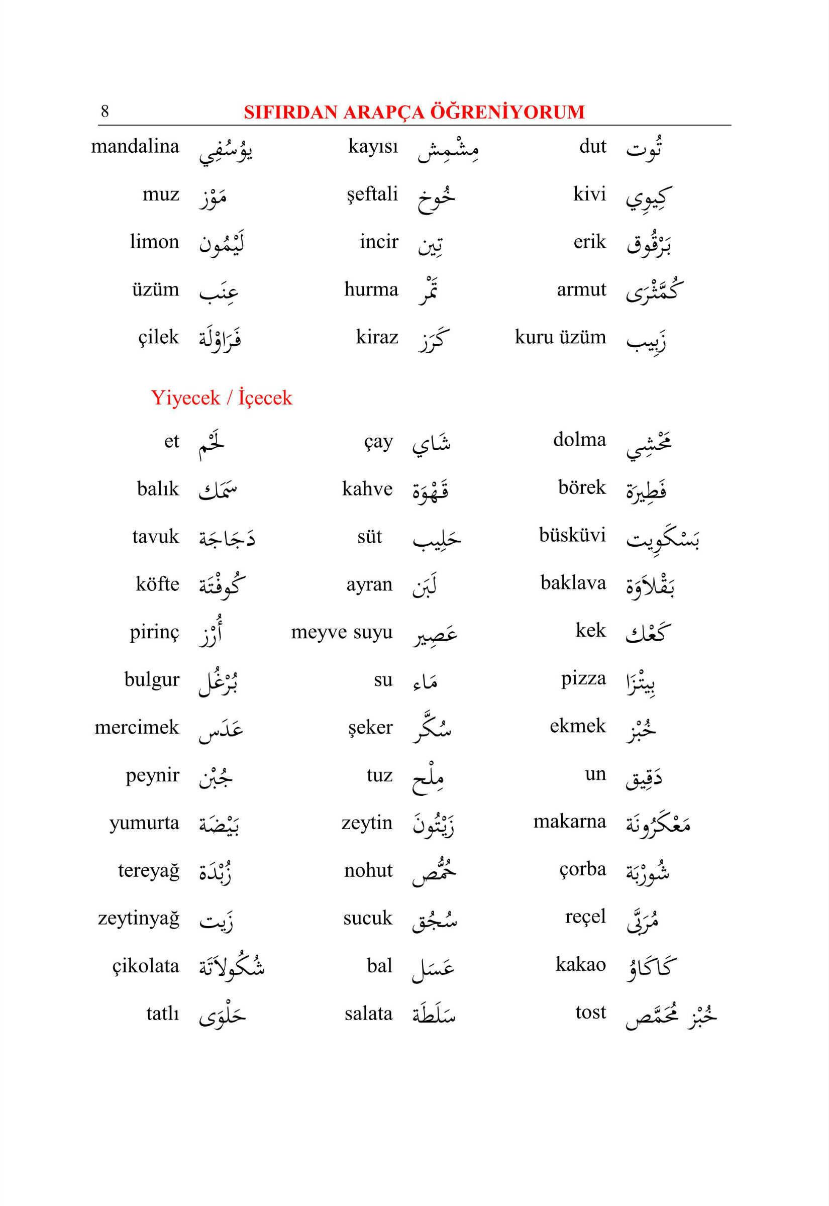 Arapça dilinin kendi kendine çalışması. Arapçayı sıfırdan öğrenmek