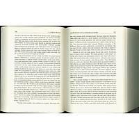 Altýparmak Peygamberler Tarihi, Mearicün Nübüvve