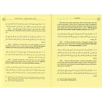 Hadislerle İslam Fıkhı, Şerhul Meanil Asar
