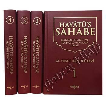 Hayatüs Sahabe, 4 Cilt