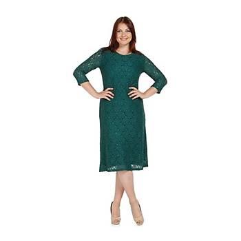 Nidya Moda Büyük Beden Sim Papatya Dantel Elbise-4080Y