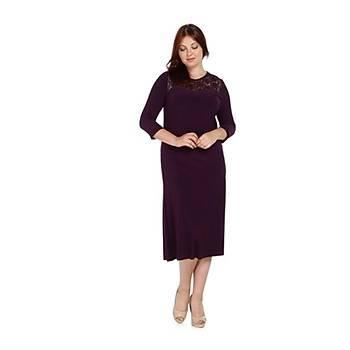 Nidya Moda Büyük Beden Dantel Roba Elbise-4078DM