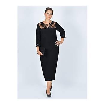 Nidya Moda Büyük BedenTaþlý Dantelli Siyah Abiye Elbise-4025S
