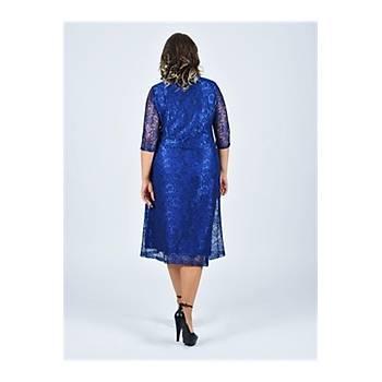 Nidya Moda Büyük Beden Sýfýr Yaka Saks Abiye Dantel Elbise-4036SX
