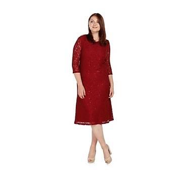 Nidya Moda Büyük Beden Papatya Dantel Elbise-4080B