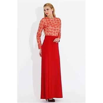 Nidya Moda Büyük Beden Üst Dantelli Elbise-4049K