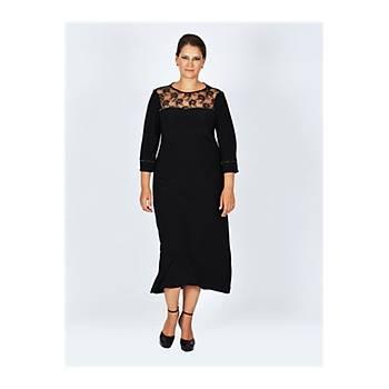 Nidya Moda Büyük Beden Dantelli Taþlý Siyah Abiye Elbise-4025AS
