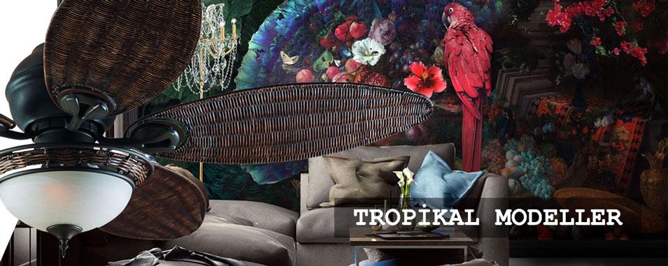tropikal modeller