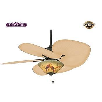 Fanimation - Islander Mat Siyah - 132 Cm. Palmiye Kanatlý Oval Düz Renk Aydýnlatmalý Tavan Vantilatörü