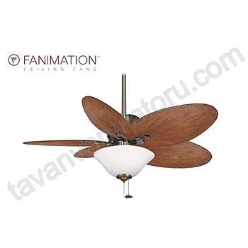 Fanimation - Islander Antik Pirinç - 132 Cm. Beyaz Buzlu Çukur Tabak Aydýnlatmalý Tavan Vantilatörü