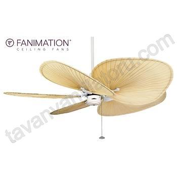 Fanimation - Islander Mat Beyaz - 137 Cm. Gerçek Palmiye Yapraðý Kanatlý Tavan Vantilatörü