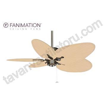 Fanimation - Islander Antik Pirinç - 132 Cm. Geniþ Oval  Palmiye Yapraðý Þekilli Kompozit Kanatlý  Tavan Vantilatörü