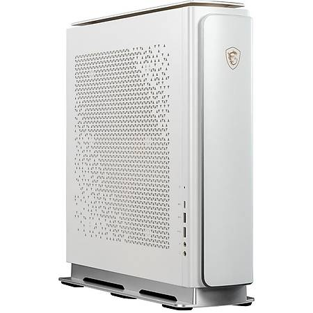 MSI CREATOR P100X 10SE-203EU i9-10900K 64GB 4TB HDD 1TB SSD 8GB RTX2080 SUPER Windows 10 Pro