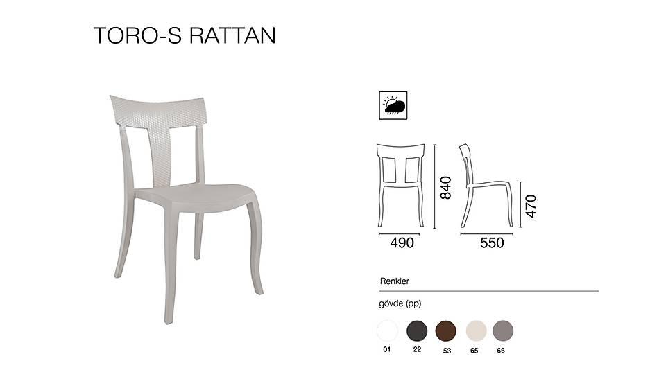 Toro-S Rattan Sandalye 2 Adet