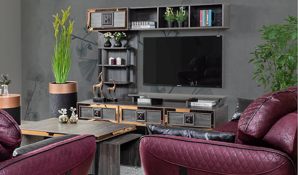 Bursa Tv Ünitesi