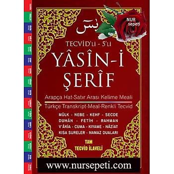 5 li  Tecvidli Yasin  / Rahle Boy