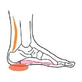 Ladyfalcon EPTA 04B Beyaz Lastikli Topuk Dikeni Ayakkabısı (Mevsimlik)