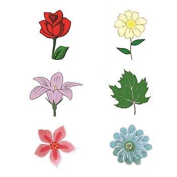 Çiçek baský çubuðu   Seti
