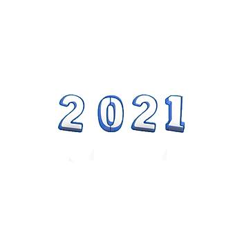 2021 Yeni Yýl Kurabiye Kalýbý Seti