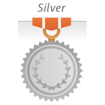 PlatinMarket Silver E-Ticaret Paketine Geçiþ