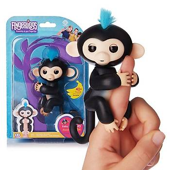 Sevimli Bebek Maymun
