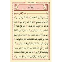 Kapsamlý 41 Yasin Kitabý 176 sayfa Elmalýlýý M. Hamdi Yazýr Mealli Orta boy 16x24cm