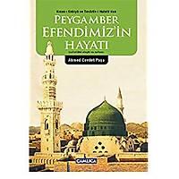 Peygamber Efendimiz'in Hayatý,Ahmed Cevdet Paþa