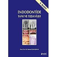 Endodontide Taný ve Tedaviler 3.baský