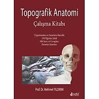 Topografik Anatomi Çalýþma Kitabý