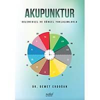 Akupunktur: Geleneksel ve Güncel Yaklaþýmlarla