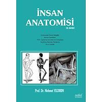 Ýnsan Anatomisi 10. Baský