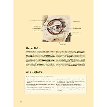 SOBOTTA, İNSAN ANATOMİSİ ATLASI (4 CİLT) (24. Almanca Baskıdan, 11. En Son Türkçe Baskı, Yayın Tarihi: Eylül 2019)