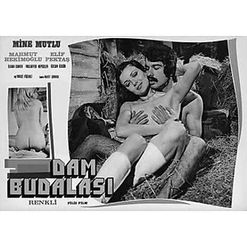 Dam Budalasý / Mine Mutlu Eski Türk Erotikcd