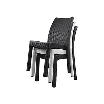 Milan Keter Rattan Sandalye Beyaz