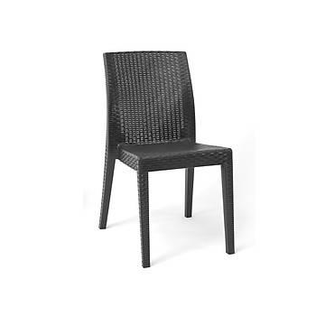 Siena Starlux Rattan Kolsuz Sandalye Antrasit