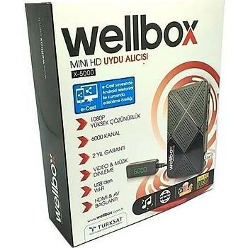 WELLX5000HD WellBox Mini HD Uydý Alýcýsý
